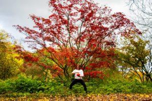qigong - Leefstijlcoach-Wageningen-Ede-Bennekom-yoga-coaching-personal-training_DSC_3810